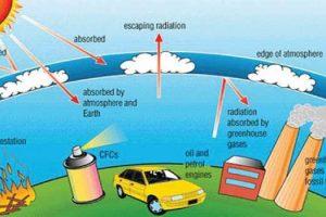 Contoh Makalah GLobal Warming