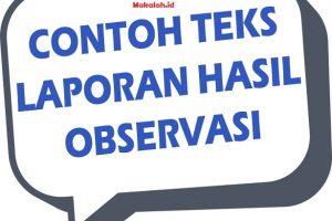 Contoh Teks Laporan Hasil Observasi Singkat